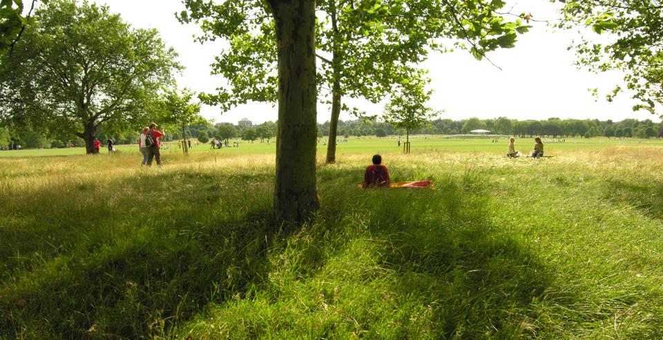 3 Meadows Regent's Park