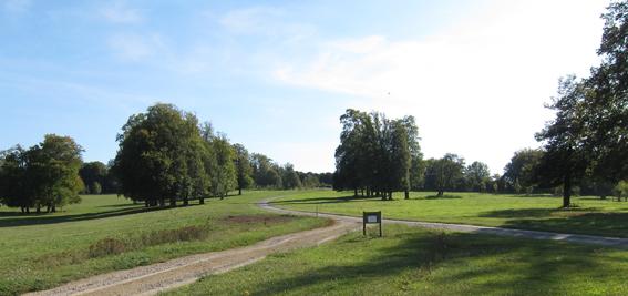 Cherkley landscape