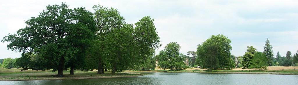 3. Lake by Lancelot Brown