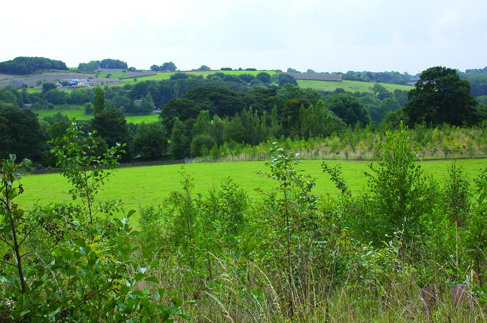 1. Hepworth view