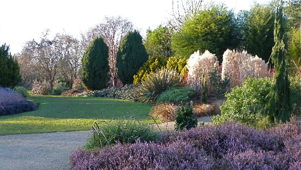 960 wide winter garden