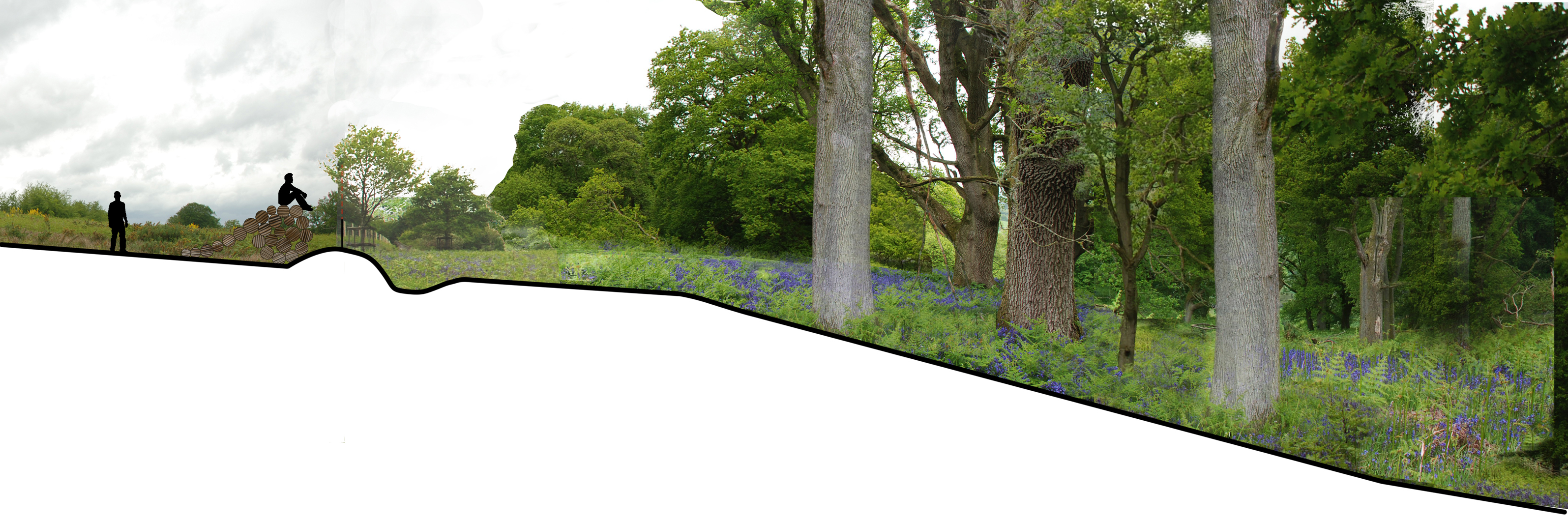 Colvin moggridge news for Female landscape architects